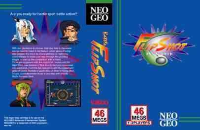 www.neogeoforlife.com/mvs/flipshot.jpg